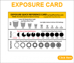 2018-ExposureCard