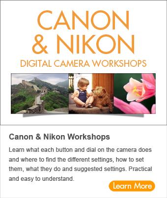 CanonNikon72-7
